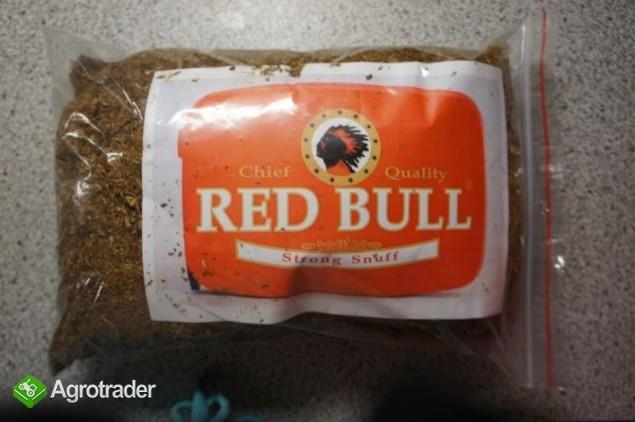 tyton RED BULL