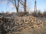 Drewno kominkowe i opałowe gatunek brzoza