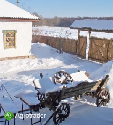 Ukraina.StajniaKoni w malowniczej miescowosciTanio - zdjęcie 3