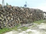 Sprzedam drewno opałowe liściaste w metrach, Elbląg, Olsztyn Braniewo