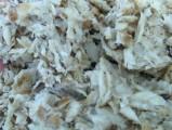 Świeże Wysłodki buraczane mokre, cukrownia Krasnystaw
