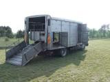 MAN 8 150 do przewozu zwierząt żywca bydła
