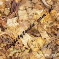 PROMOCJA! - Najlepsze liście tytoniu - 535 911 831