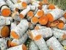 Ukraina.Drewno 15 zl/m3.Produkcja pelletu,brykietu