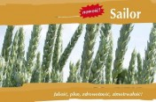 Kwalifikowane nasiona siewne pszenica ozima Sailor