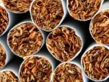 UWAGA!!! Najlepszy tytoń do palenia oraz liście!! POLECAM!!!!
