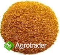 Sprzedamy DDGS z kukurydzy luzem w cenie 900 zł/t netto z dostawą