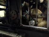 Sormac maszyna do obierania cebuli