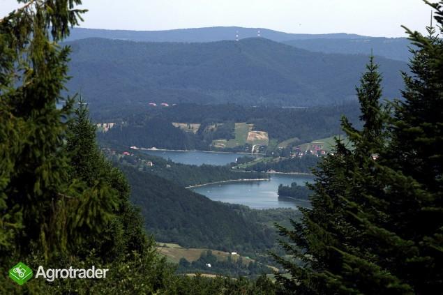 Bieszczady, Solina, 150 ha rolno-leśne - zdjęcie 5