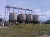 Sprzedam gospodarstwo rolne 87 ha + budynki  zbożowo-hodowlane