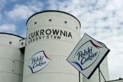 Wysłodki buraczane mokre cukrownia Krasnystaw,Malbork 2016/2017