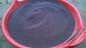 Tymianek nasiona ze zbioru 2016, Super siła kiełkowania