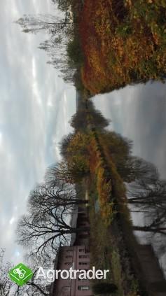 Gospodarstwo rolne - zdjęcie 4