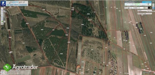 Na sprzedaż grunt rolny 11 Ha.Łuków, Wieś Ławki
