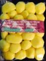 Obrane warzywa obieranie warzyw ziemniaki buraki cebula marchewka