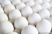 Ukraina. Jaja kurze dietyczne od 1,7zl opakowanie 10szt. Swieze