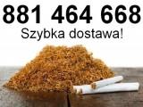 Tytoń papierosowy do nabijania w gilzy tanio! Tani tytoń! Tytoń jasny