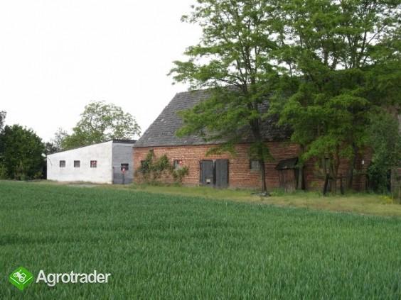 Gospodarstwo rolne o pow. 14,96 ha wraz z zabudowaniami - zdjęcie 5