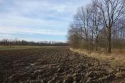 śląsk cieszyński sprzedam grunt rolny 62 ar nadający sie pod staw