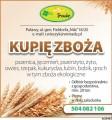 skup zboża: pszenicy, pszenżyta , owsa, jęczmienia, żyta