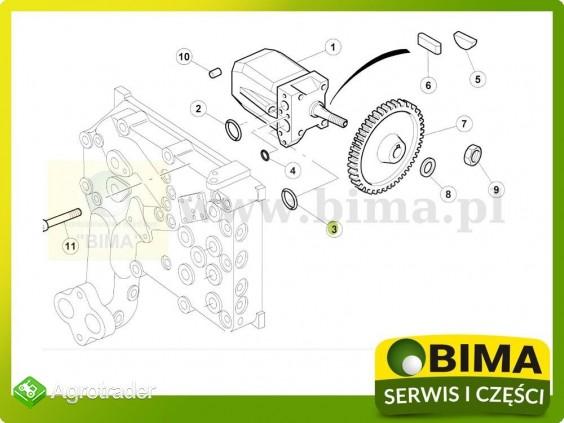 Oring pompy hydraulicznej Renault CLAAS Atles 925,926 - zdjęcie 1