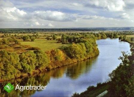UkrainaGospodarstwa i grunty rolneSprzedaz,wynajem - zdjęcie 4