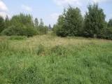 Działka rolna w Suwałkach