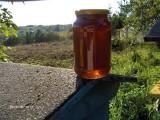 Miód nektarowo-spadziowy 1000 słoików 0,9l.