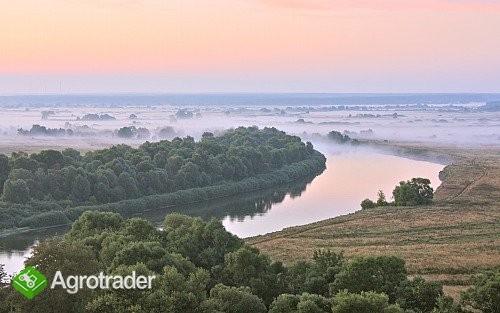 Ukraina.Staw rybny,35ha + torfowiska,30ha.Tanio - zdjęcie 4