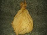 Sprzedam liście tytoniu !!!
