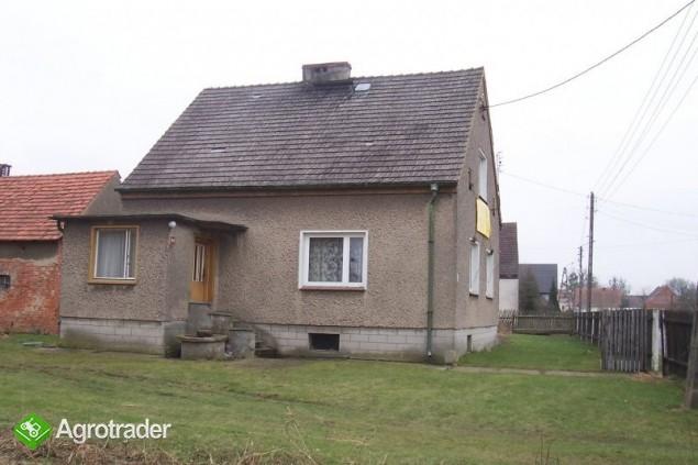 Sprzedam dom zabudowania gospodarcze 331 m2 - zdjęcie 3